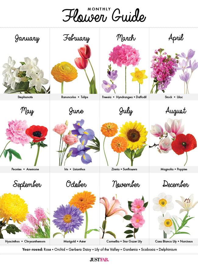 Birth Month Flowers Body Art Pinterest And